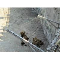 Buy cheap Stainless steel X-Tend Wire Rope Mesh For Aviary Mesh from wholesalers