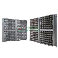 Quality 30 Holes Extrusion Egg Tray Or Carton Pulp Mold with CAD Design for sale