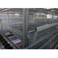 Quality Several Tiers Poultry Farm Feeding System High Elasticity Reduce  Deformation for sale