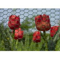 Quality Environmental Plastic Coated Chicken Galvanized Wire Netting For Garden for sale