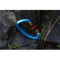 Quality Colorful Stainless Steel Mini Locking Carabiner for sale