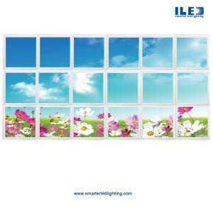 Ceiling Art, LED Skylights, Sky Ceiling Panels, LED Backlit Sky Ceilings, Digital Panoramic Wall Murals & the new Virtua