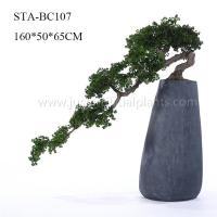 Quality Home Office Decoration Artificial Pine Bonsai Without Pot , Curving Stem for sale