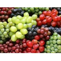 Quality Grape Seed and Skin Extracted Powder for sale
