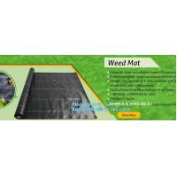Quality pp weed mat organic agricultural plastic mulch, recyclable weed barrier,PP ground mat /concert crowd control barrier wee for sale