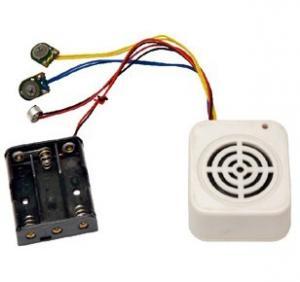 China Motion sensor sound Recordable Music Box with customized musics on sale