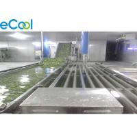 Quality Light Weight Commercial Cold Storage , Cold Storage For Vegetables And Fruits for sale