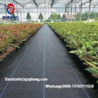 Quality Black or Green agricultural pp weed control mat/ ground cover Biodegradable Polypropylene Nonwoven Mat Weed Control Land for sale