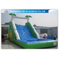 Quality Commercial Grade Cool Inflatable Water Slide , Water Slide For Pool Inflatable for sale
