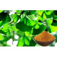 Quality CONBA Ginkgo Biloba Bulk Powder Extraction Processing With High Purity GACP for sale