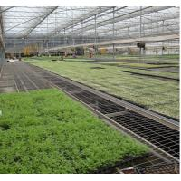 China Flower Vegetable Growing Greenhouse Grow Beds Hot Dip Galvanized Stand Material on sale