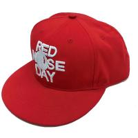 Quality 3d Embroidered Hip Hop Snapback Hats , Sports Style Unstructured Snapback Hats for sale