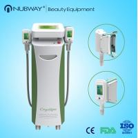 Quality Double Heads Portable Fat Freezing Machine Home Use Cryolipolysis body slimming machine for sale