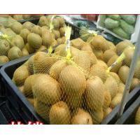 Quality Multi Color Choice Net Packaging Bags Mesh Netting Bag Flexible For Fruit for sale