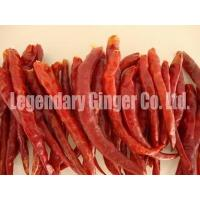 Buy cheap Dried Red Yunnnan Chilli Without Stem( Export Grade) from wholesalers