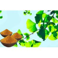 Buy cheap Water Soluble Ginkgo Leaf Extract , Brownish Yellow Ginkgo Biloba Powder from wholesalers