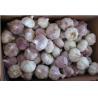Buy cheap Fresh Garlic Normal White Garlic in 10KG Carton from wholesalers