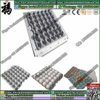 China Best quality egg tray mould of fashion design(six pieces inside) on sale