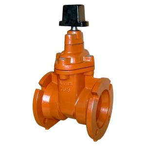 Quality AWWA C509 MJ FL Resilient Seated Mechanical Joint Gate Valve for sale