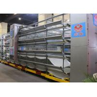 Quality Industry Automatic Chicken Cage / Layer Hen Cages Customized Size for sale