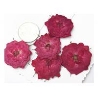 Quality True Rose Flower Dried Pressed Flowers For Pendant Necklace Jewelry Ornaments Material for sale