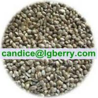 Quality Hulled Hemp Seeds for sale