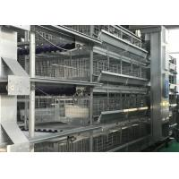 Quality Feed System Poultry Keeping Equipment  Easy Use Convenient Management for sale