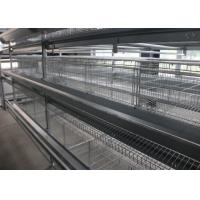 Quality 160 Birds Layer Chicken Cage Automatic Controlling System Q235 Steel Wire Material for sale