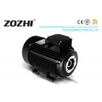 Quality HS 112M3-4 6.2KW 8.5hp Hollow Shaft Motor Direct Pump Mounting For Industrial Cleaning for sale