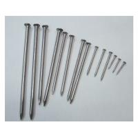 Quality Common Round Nail for sale