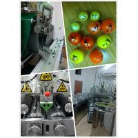 Best 12 Inch And Small Capacity Servo Motor Paintball Encapsulation Machine With Formula Provide wholesale