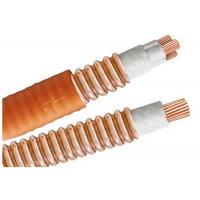 Quality Light Load Multicore High Temperature Cable BTTW 500V BS IEC Certification for sale