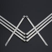 Buy Heavy Duty Stainless Steel Cable Ties Self Locking 10 Inch Zip Ties 50pcs / Pkt at wholesale prices
