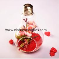 Best Hanging bulb glass vase air plant votive wholesale