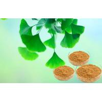 Quality Pharmaceutical Grade Pure Ginkgo Extract For Auxiliary Hypolipidemic for sale