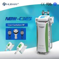 Quality Nubway Cryolipolysis Weight Loss Machine / Cryolipolysis Cool Shaping Beauty Machine for sale