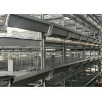 Quality Drying Automatic Manure Removal System Comfortable Environment For Chicken for sale
