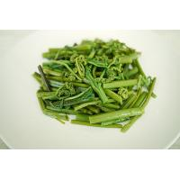 Quality Green Fern Nutritious Boiled Vegetables , Healthy Boiled Bracken for sale