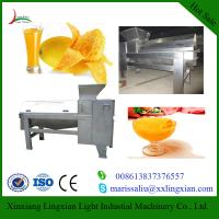 China Full Automatic Mango Processing Equipment Mango destoner and beater for sale on sale