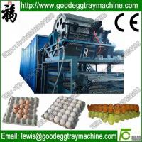 Quality Paper Pulp Moulding Machine for sale