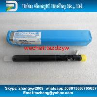Quality DELPHI CR Injector EJBR04901D , R04901D , 28280600 , 27890116101 TML 2.2L E4 for sale