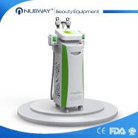 Quality High quality hot sale Cryolipolysis slimming body shaping beauty machine with CE approval for sale