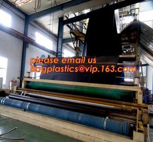 Quality 1mm hdpe geomembrane indoor fish farming tank 1.0mm geomembrane,2mm high density polyethylene waterproof membrane BAGEAS for sale