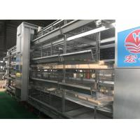 Quality Stable Automatic Manure Removal System Full Chicken Breeding For Layers for sale