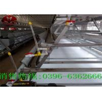 Quality Custom Automatic Manure Removal System A Type Poultry Farm Machine Long Service Life for sale