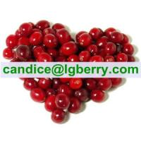 Quality 100% superfruit blend imported cranberry for sale