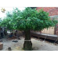 Best UVG glassfiber indoor green fake banyan tree tall silk trees for shopping center decoration GRE054 wholesale