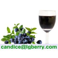 Quality 100% Natural blueberry juice concentrate for sale