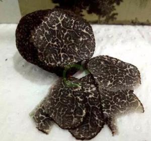 China Wild perigord truffle,Tuber melanosporum,Black Truffle,truffe noire ,Hei gong lu on sale