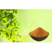Quality CHP2015 Ginkgo Biloba Leaf Extract With GACP Planting Base for sale